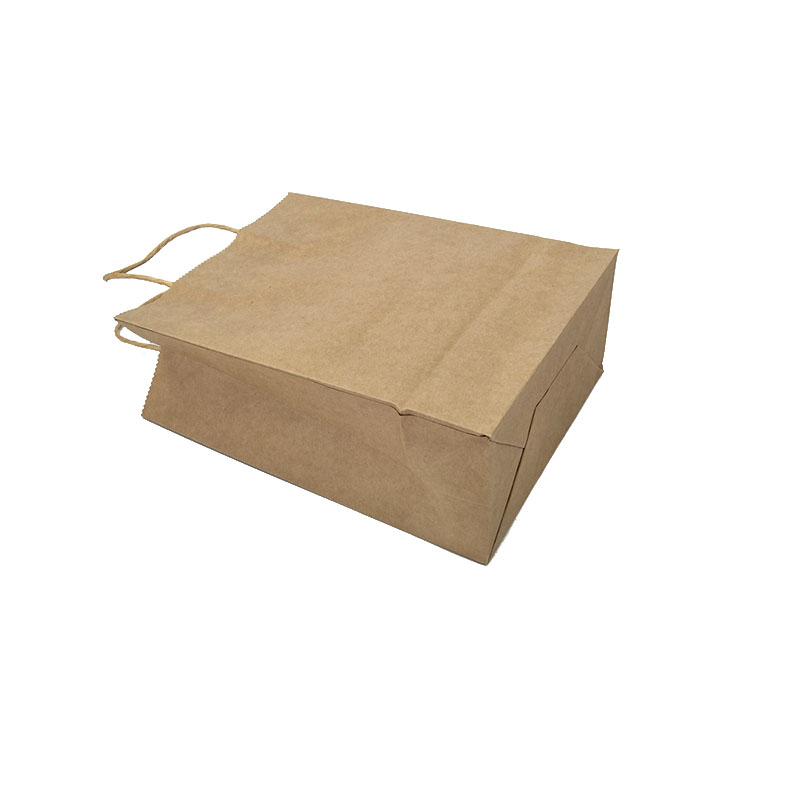 Welm paper bags wholesale with gold logo print for shopping-5