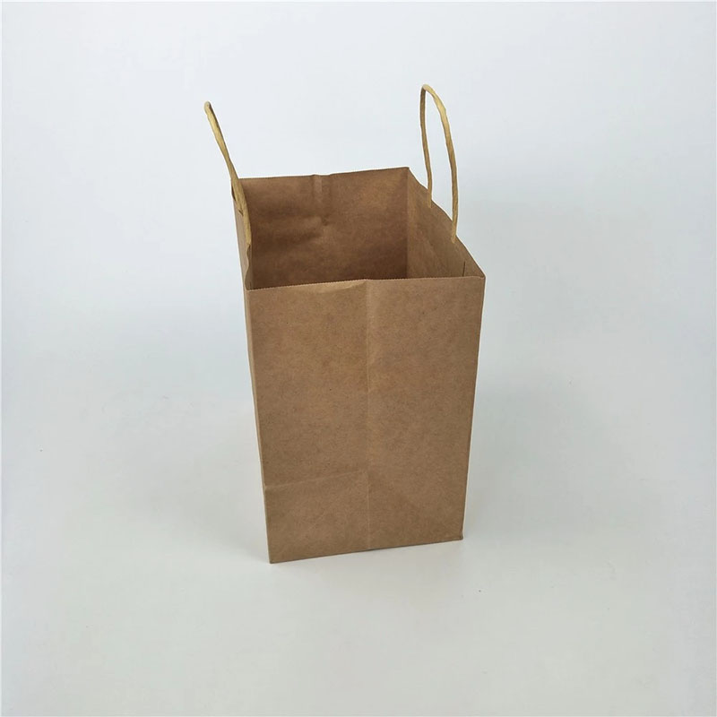 Welm paper bags wholesale with gold logo print for shopping-8