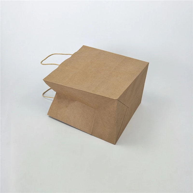 Welm paper bags wholesale with gold logo print for shopping-9