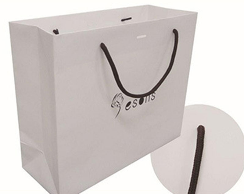 Welm dried printed paper lunch bags logo for sale-9