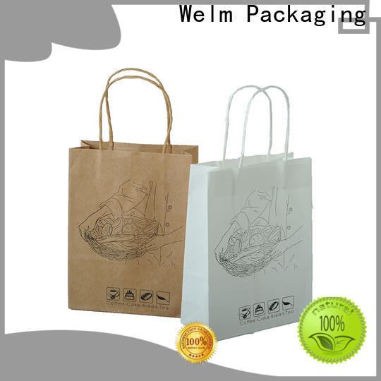 Welm greaseproof plain brown paper bags with handles with gold logo print for shopping