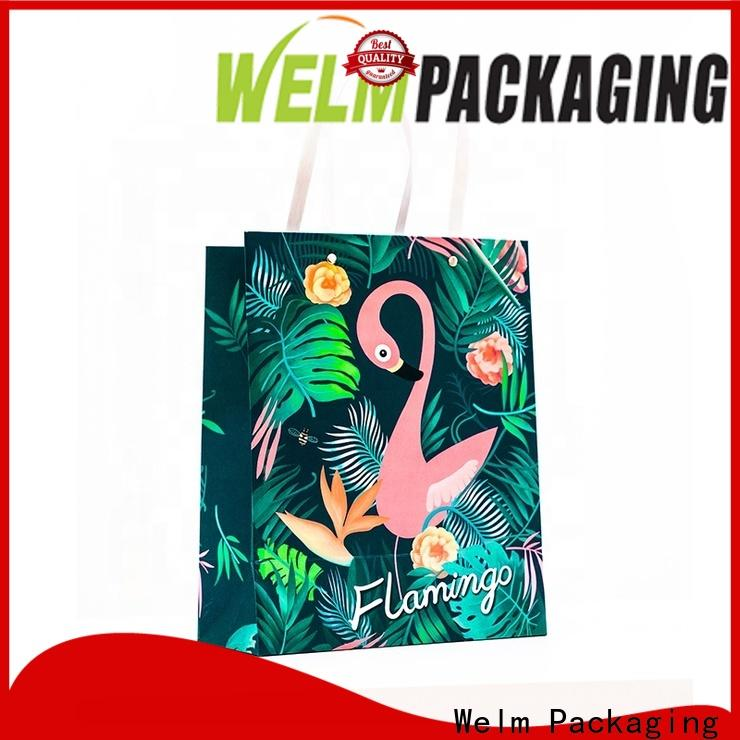 Welm food printed paper bags with handles company for gift shopping
