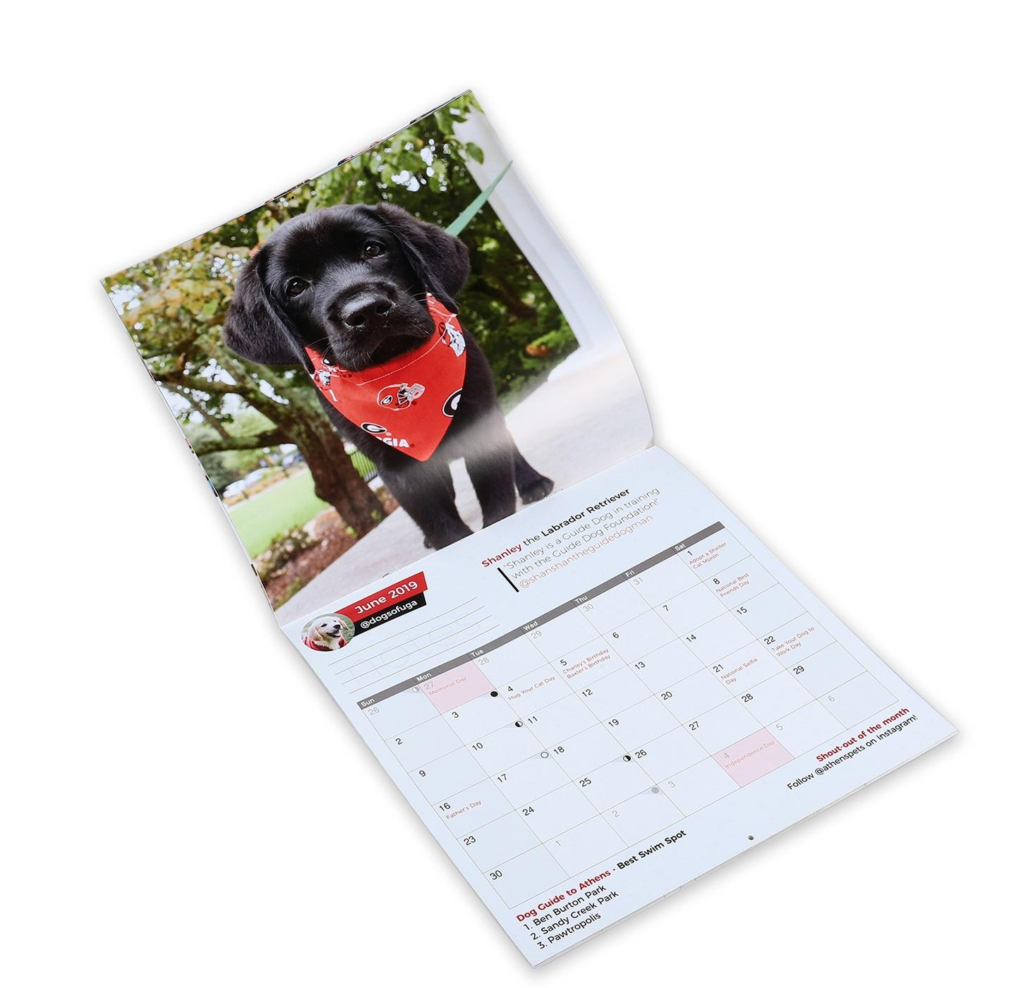 Custom Printing Large Size Art Paper Chinese Wall Calendar