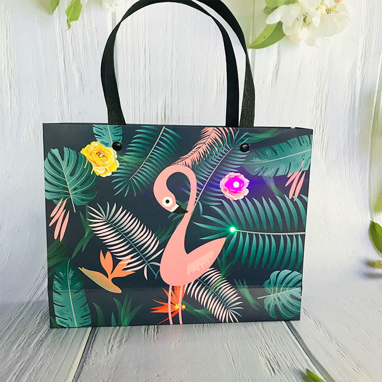 ecofriendly paper bags for sale wholesale pp for shopping-3